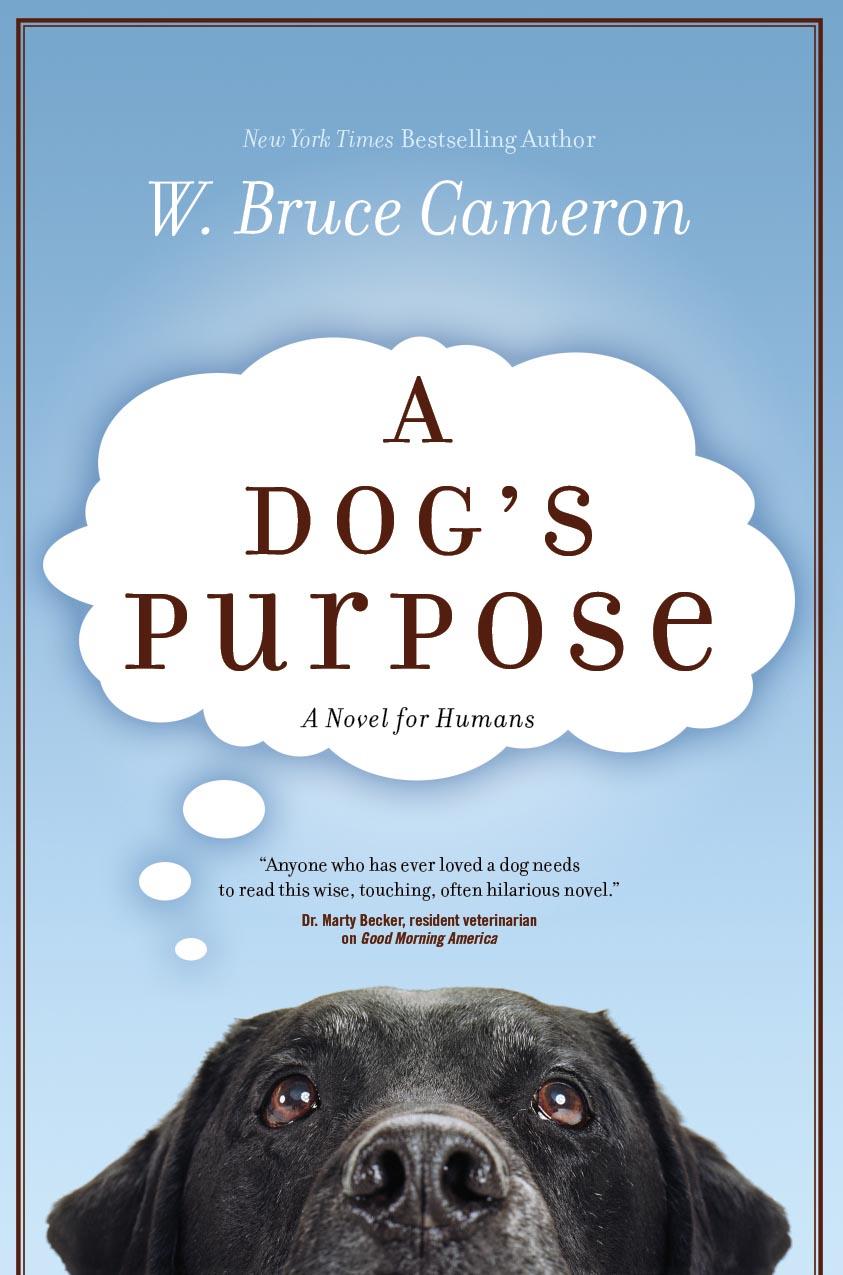 A Dog's Purpose post thumbnail