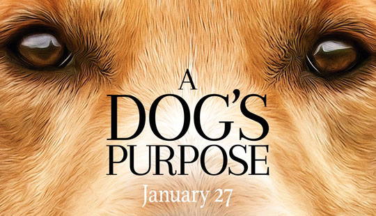 A Dog's Purpose Trailer post thumbnail