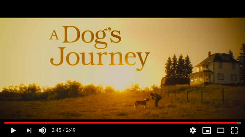 A Dog's Journey Trailer Released post thumbnail